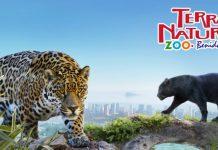 animales en terra natura benidorm