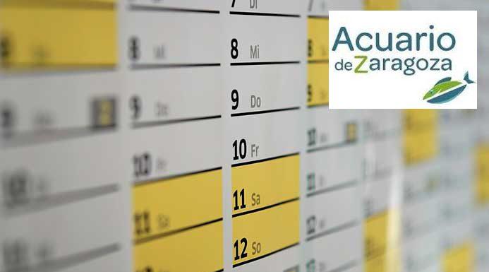 horarios y calendario acuario de zaragoza